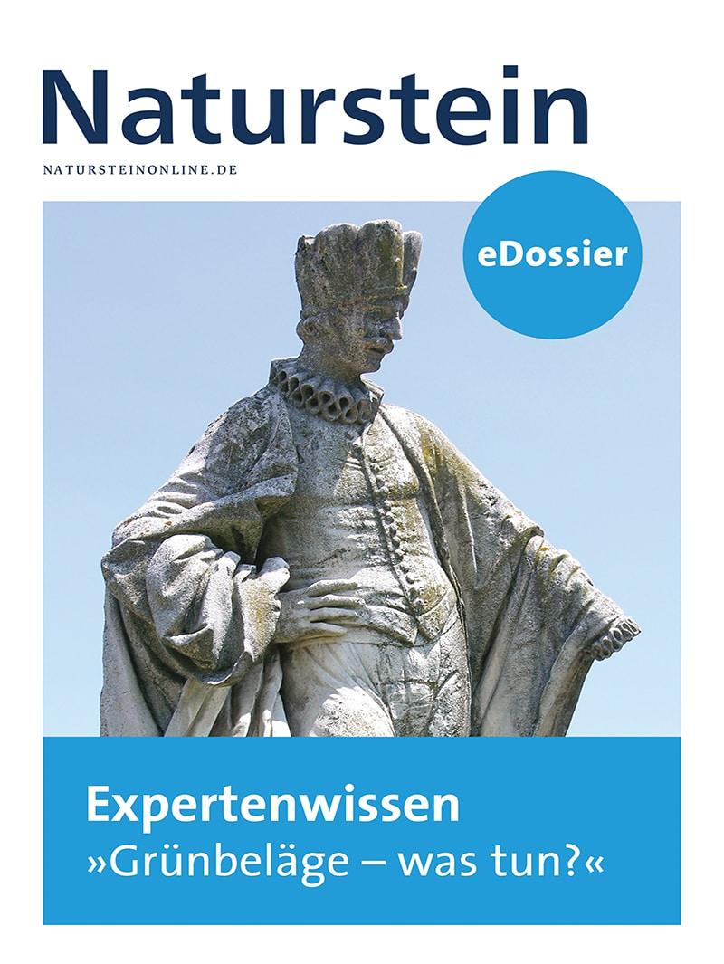 """Produkt: Download Expertenwissen """"Grünbeläge – was tun?"""""""